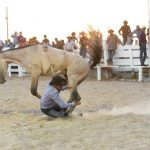 Rupununi Rodeo Photos 111-120