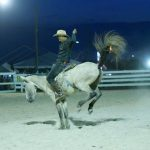 Rupununi Rodeo Photos 241-250