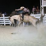 Rupununi Rodeo Photos 261-270