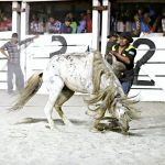 Rupununi Rodeo Photos 271-280
