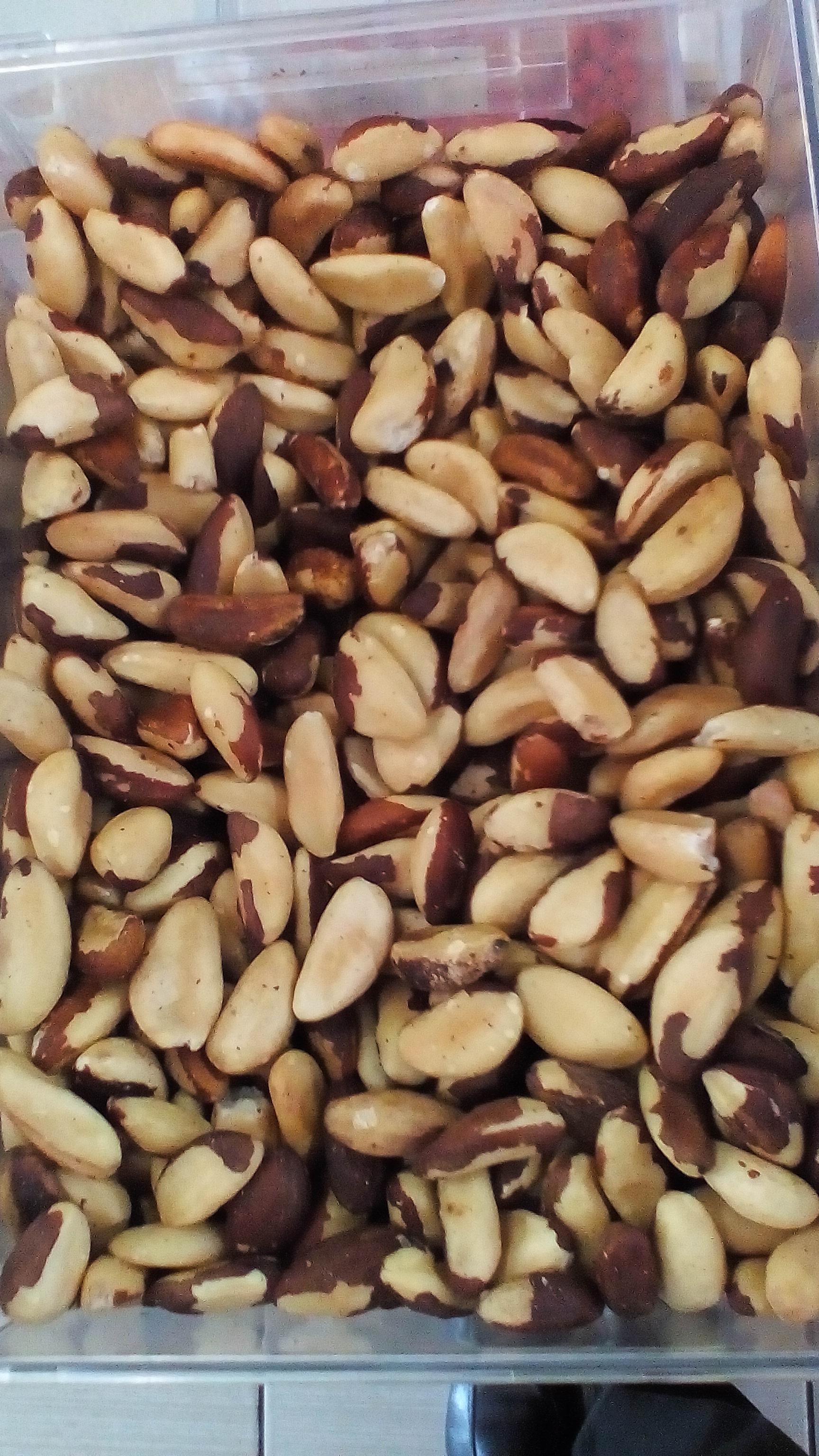 Brazil Nuts – Castanha do Para