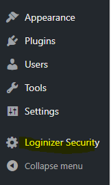 Loginzer Settings