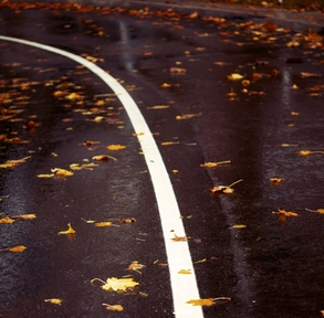 Photo Thanks To: http://www.freeimages.com/photo/road-covered-with-leaves-1339519