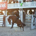 Rupununi Rodeo Photos 91-100