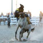 Rupununi Rodeo Photos 101-110