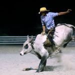 Rupununi Rodeo Photos 151-160
