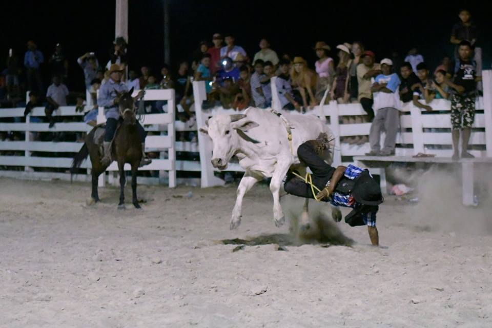Rupununi Rodeo Photos 161-170