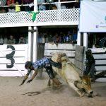 Rupununi Rodeo Photos 171-180