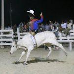 Rupununi Rodeo Photos 191-200