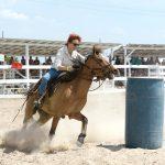 Rupununi Rodeo Photos 231-240