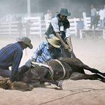 Rupununi Rodeo Photos 281-290