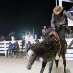 Rupununi Rodeo Photos 291-300