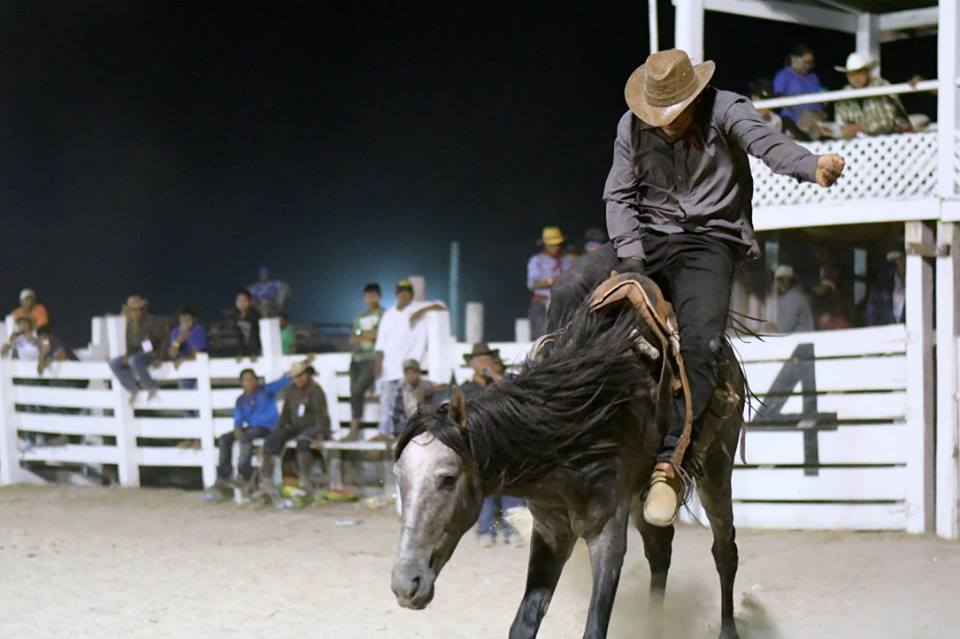Rupununi Rodeo Photos 291-300