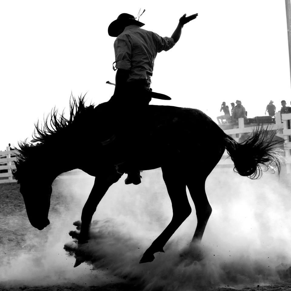 The Rupununi Rodeo – Over 300 Photos