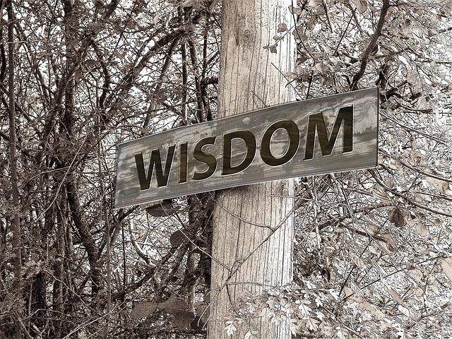 wisdom photo
