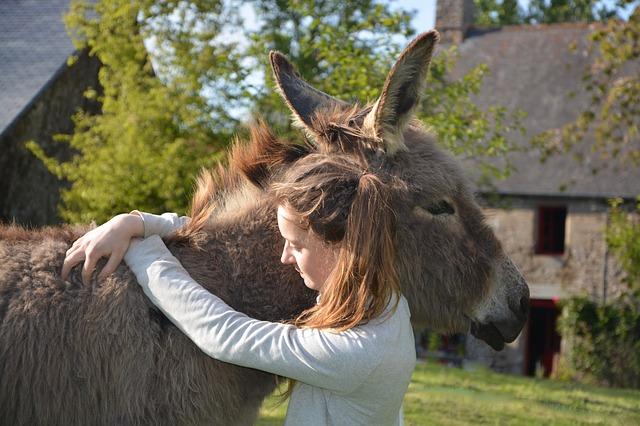 Balgobin Singh, the Princess and the Donkey