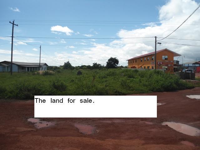 Lethem Road Land (8)