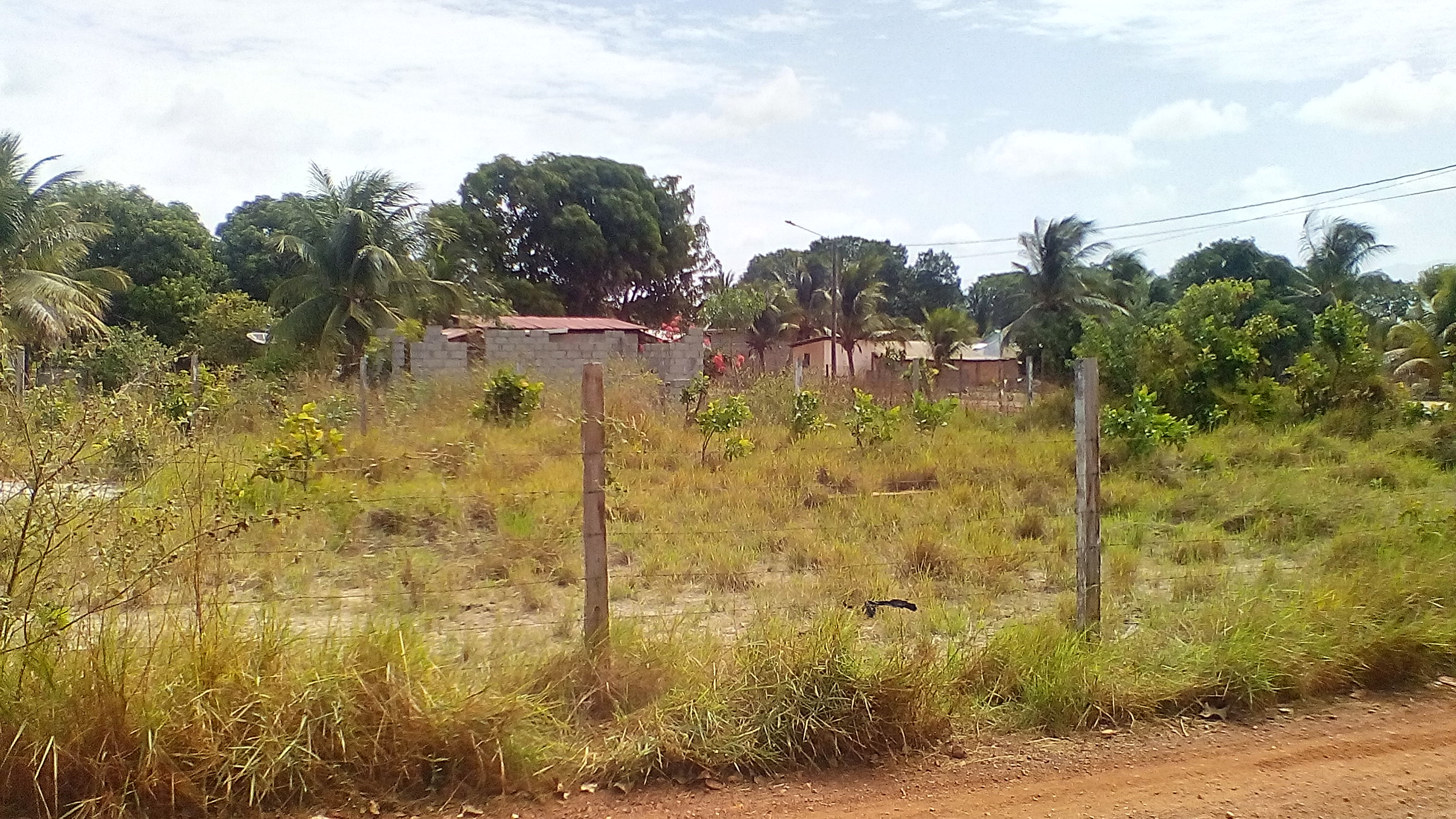 Land for Sale in Lethem, Region #9